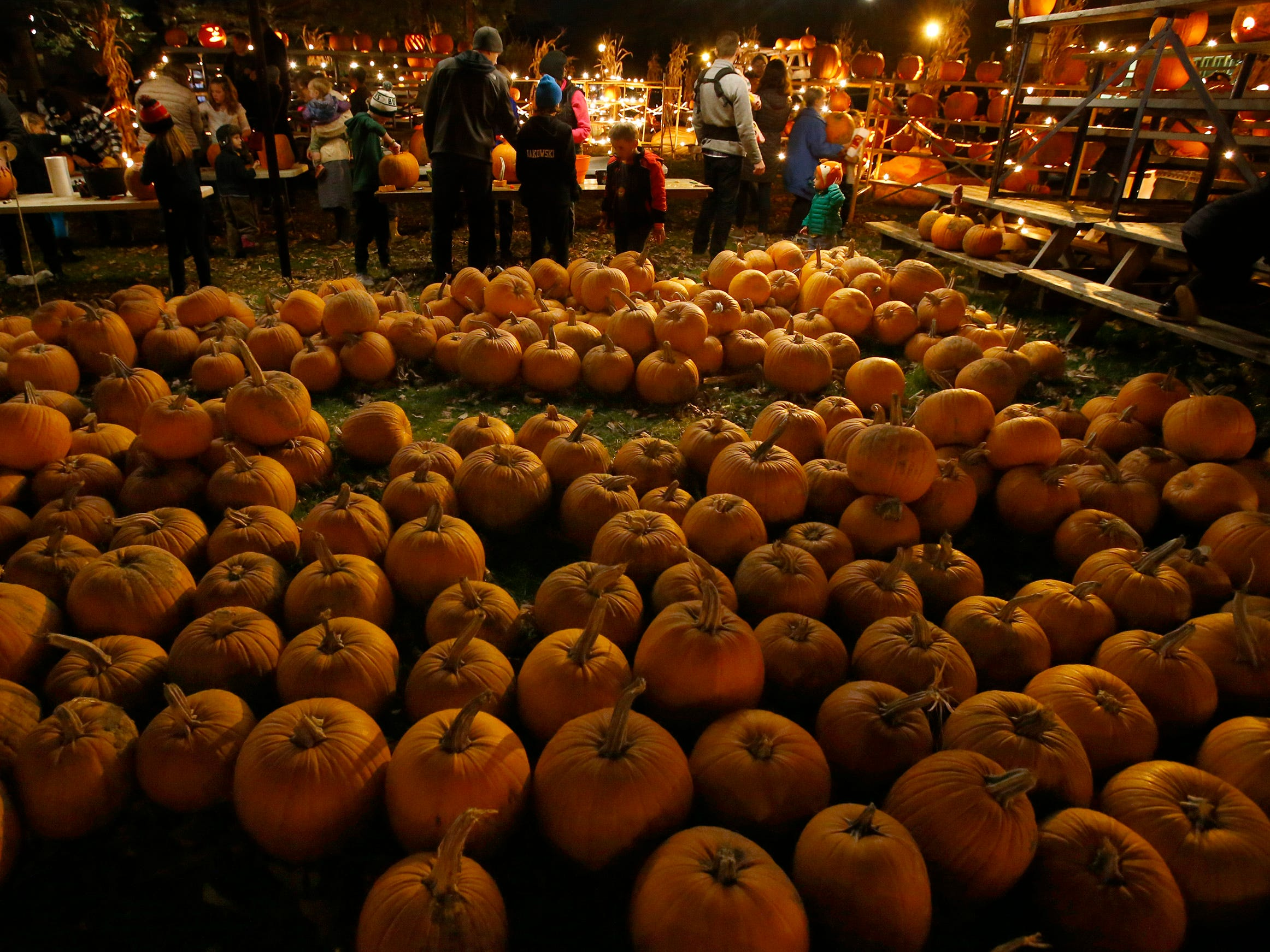 Visitors can select a gourd from the pumpkin patch to carve at the 32nd annual Whitefish Bay Great Pumpkin Festival at Old Schoolhouse Park, hosted by the Whitefish Bay Civic Foundation, on Oct. 25. The festival runs from 6 to 9 p.m. Wednesday, Oct. 24, through Sunday, Oct. 28.