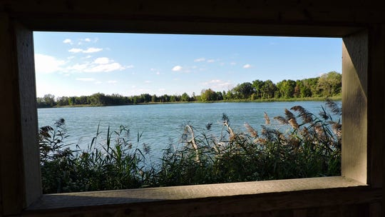 You can see most of Mehrhof Pond and its waterfowl from the blind.