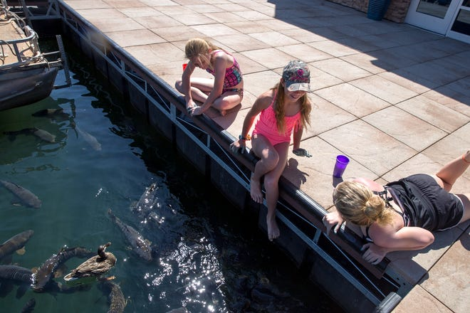 Elizabeth Marshall, left, Brianne Roberts and Faythe Kennedy feed fish and ducks June 8, 2017, at the Navajo Lake Marina at Navajo Dam. Navajo Lake is envisioned as one of several local attractions that would be part of an outdoor attractions asset plan being put together by Farmington officials and members of a nonprofit group.