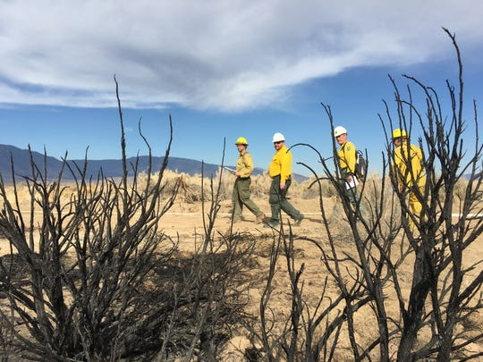 Students in a wildland origin and cause investigation training course hone their skills on a burn area in Minden, Nev. on Oct. 24, 2018.
