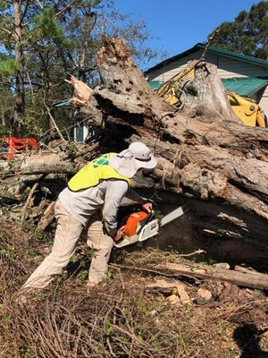 Darrell Brantley cuts through a tree trunk in Quincy.