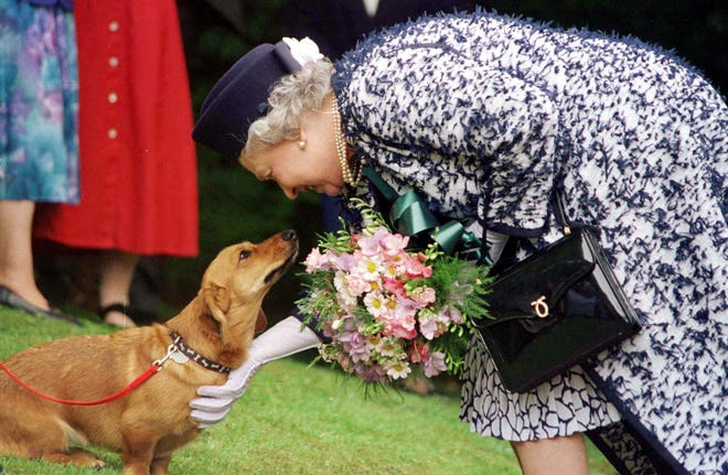 Queen Elizabeth II with one of her dogs in May 1998.