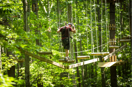 Swing into the season at The Adventure Park at Virginia Aquarium.
