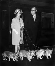 Queen Elizabeth II arrives at King's Cross railway station in London with four of her corgis after a holiday at Balmoral in Scotland in October 1969.