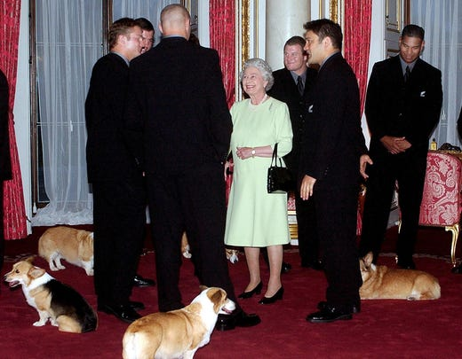 Visitors often met their dogs when they met Queen Elizabeth II, as in November 2002 when New Zealand rugby team All Blacks visited her at Buckingham Palace.