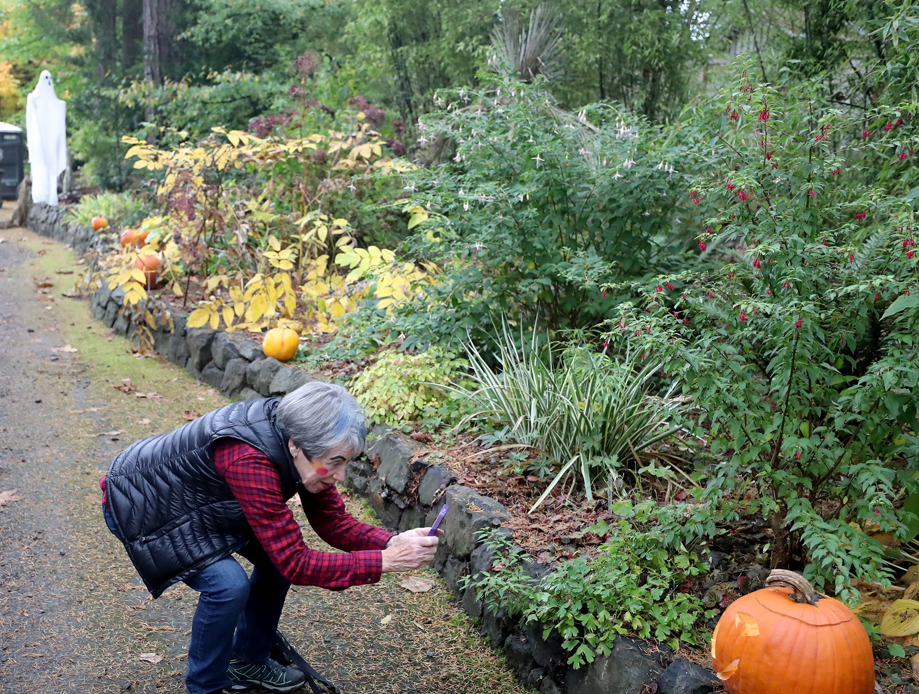 Lenore Lynch takes a photo of one of the pumpkins she carved at the Haunted Heronswood 2018 in Kingston was Friday and Saturday, October,26-27. The second annual garden halloween charters tour featured some SÕKlallam folk stories.