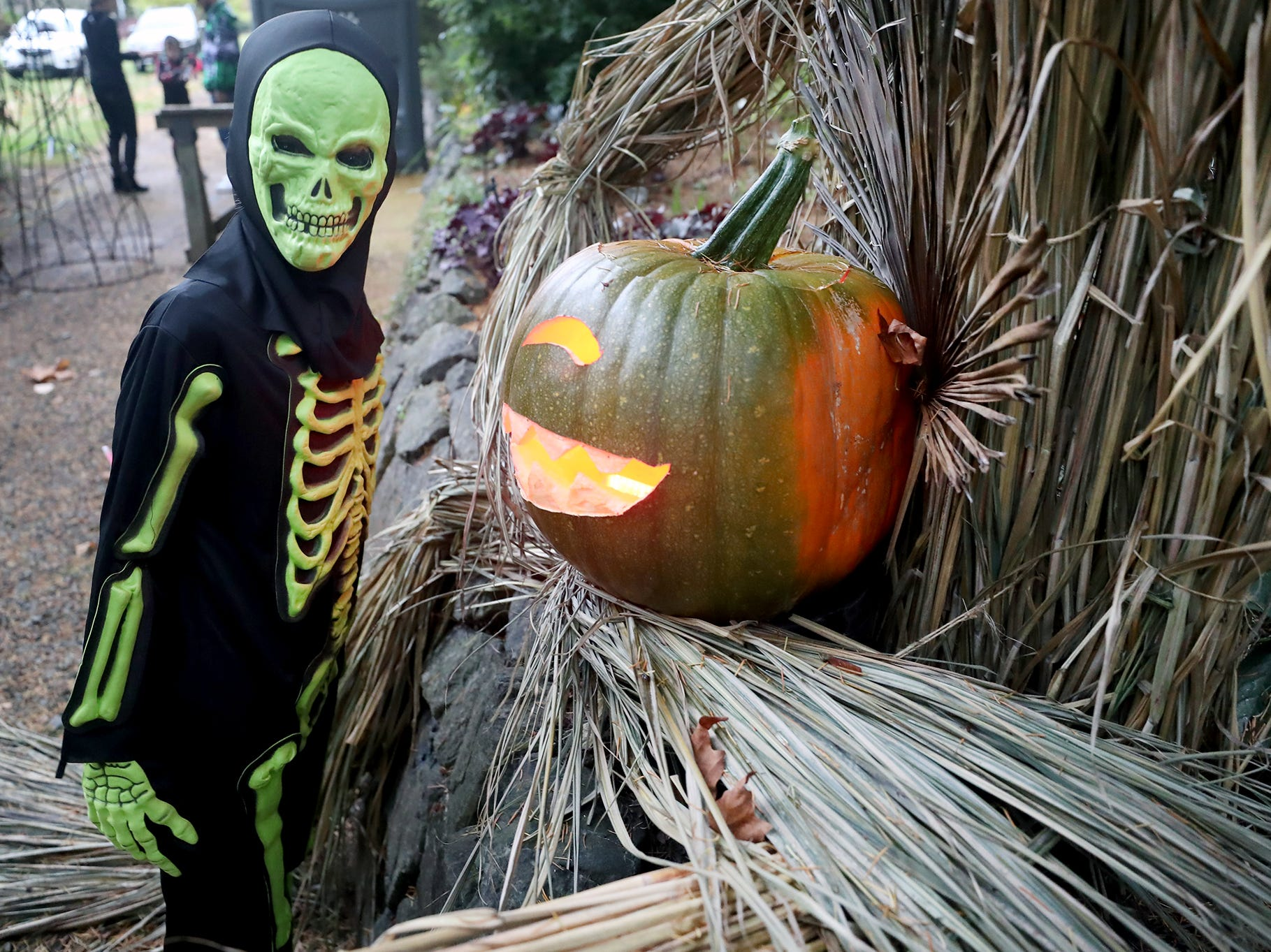Conlee McDonald, 10, of Poulsbo  looks over the pumpkins at the Haunted Heronswood 2018 in Kingston was Friday and Saturday, October,26-27. The second annual garden halloween charters tour featured some SÕKlallam folk stories.