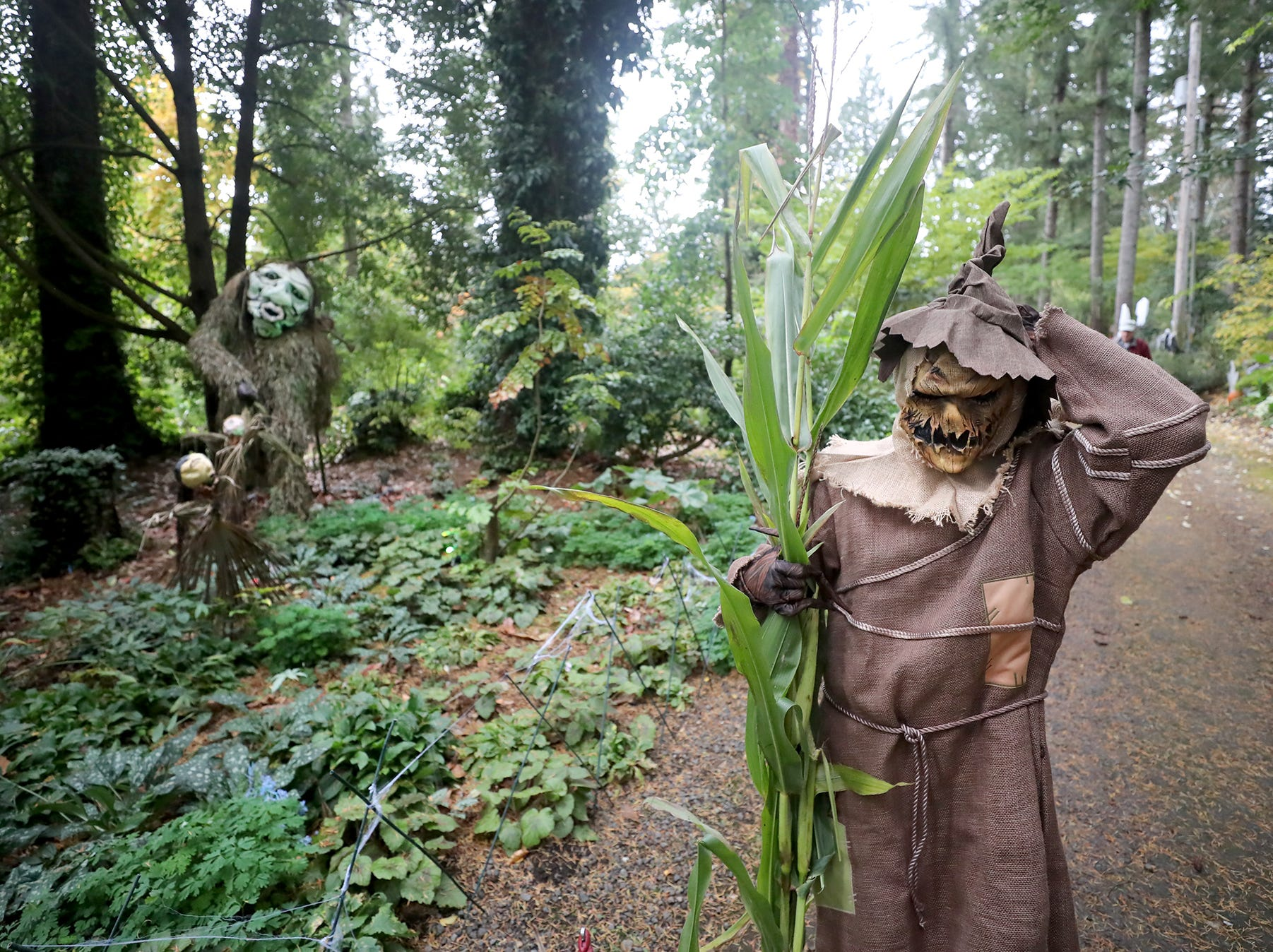 Rene Wyatt gets her scarecrow costume on at the Haunted Heronswood 2018 in Kingston was Friday and Saturday, October,26-27. The second annual garden halloween charters tour featured some SÕKlallam folk stories.