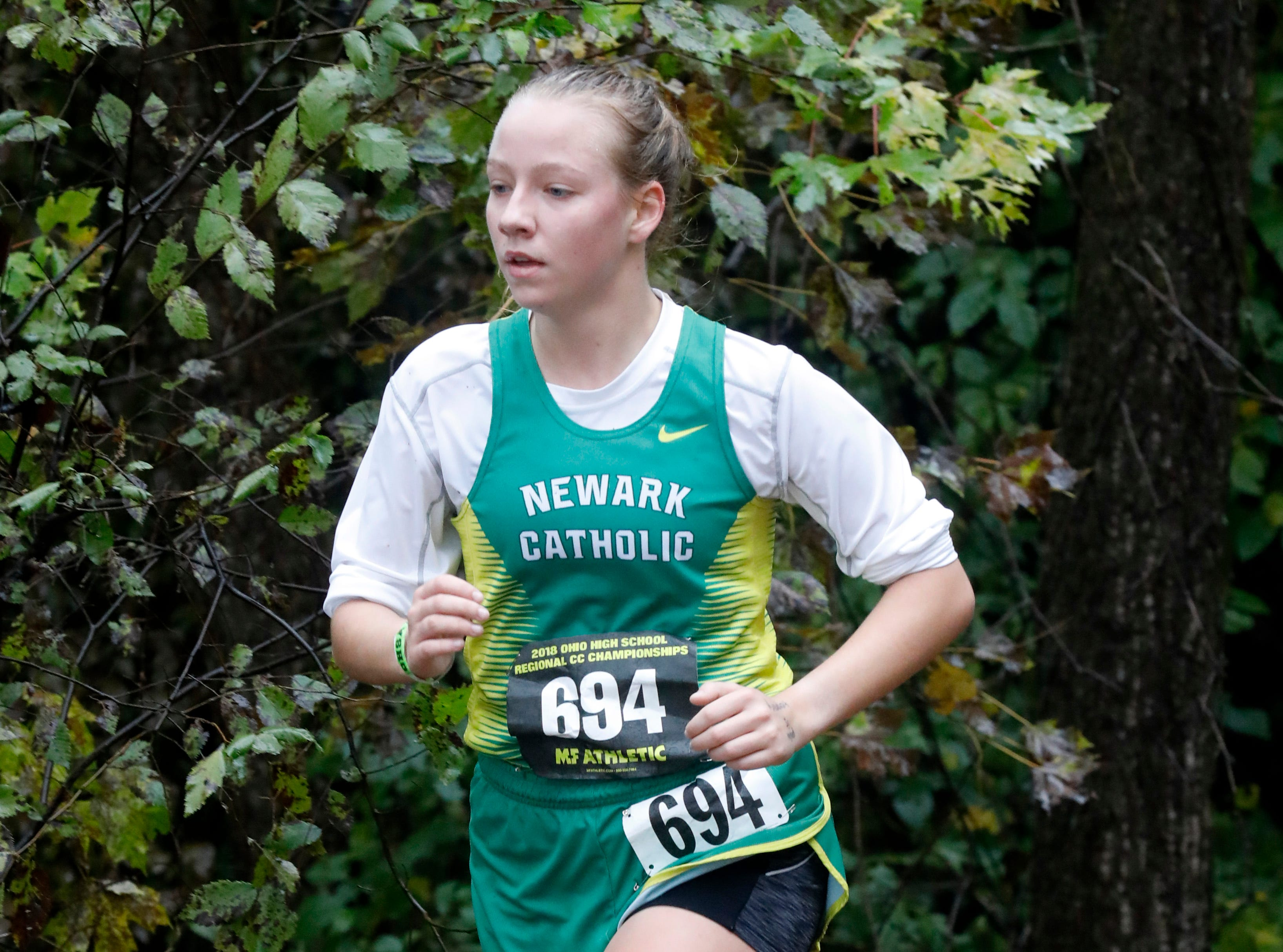 Newark Catholic's Daryle Howard runs in the Regional Cross Country meet Saturday, Oct. 27, 2018, at Pickerington North High School in Pickerington.