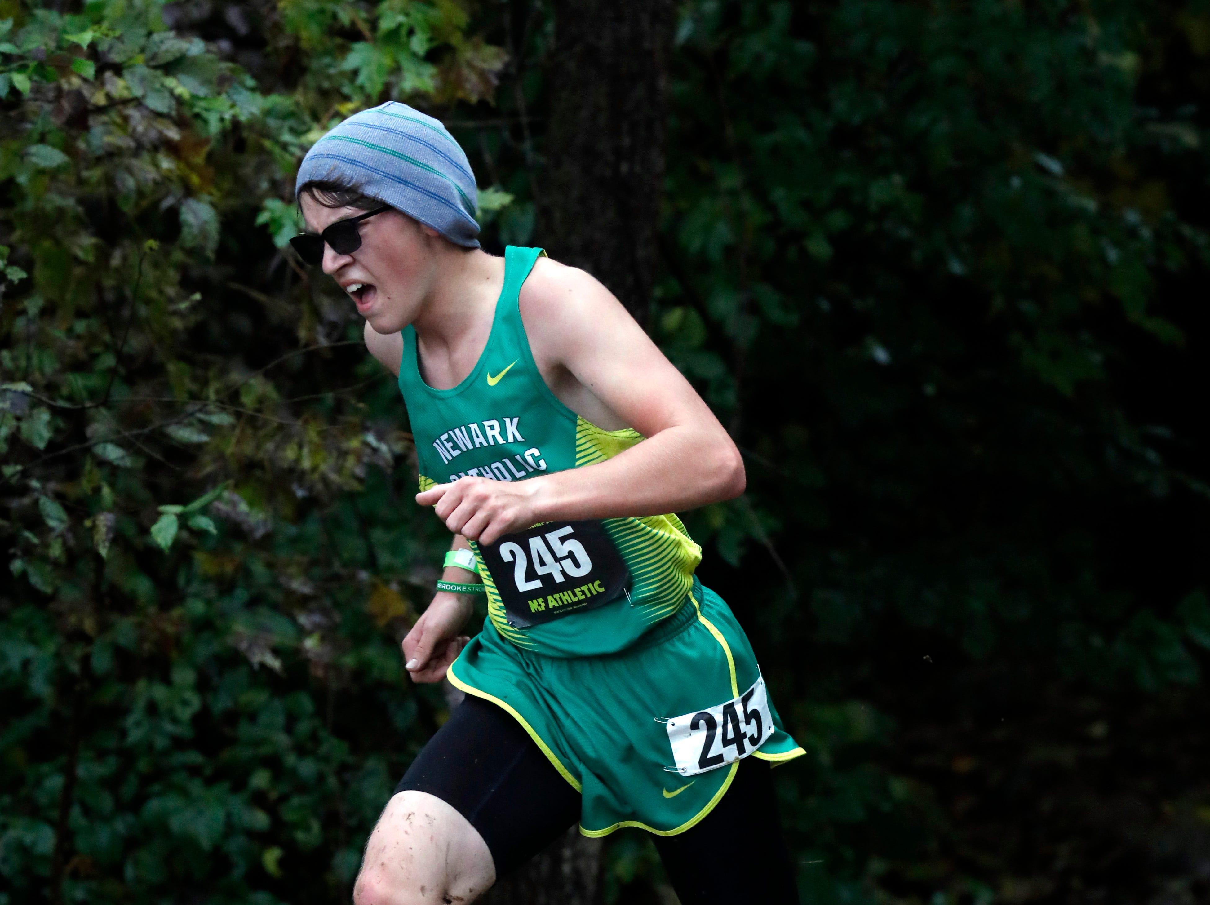 Newark Catholic's Andy Bemis runs in the Regional Cross Country meet Saturday, Oct. 27, 2018, at Pickerington North High School in Pickerington.