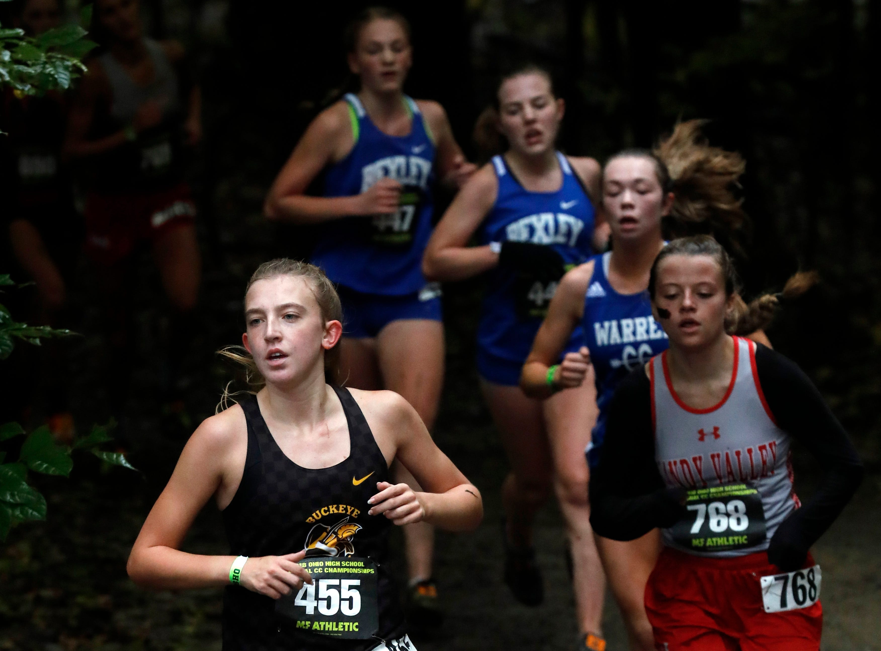 Buckeye Valley's Chayse Arnhold runs in the Regional Cross Country meet Saturday, Oct. 27, 2018, at Pickerington North High School in Pickerington.