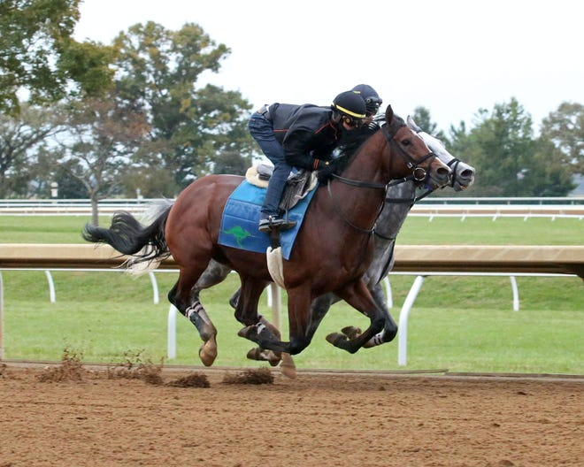 Oscar Performance runs at Keeneland in advance of the 2018 Breeders' Cup.