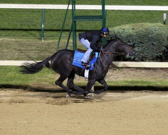 Serengeti Empress works at Churchill Downs in advance of the 2018 Breeders' Cup.