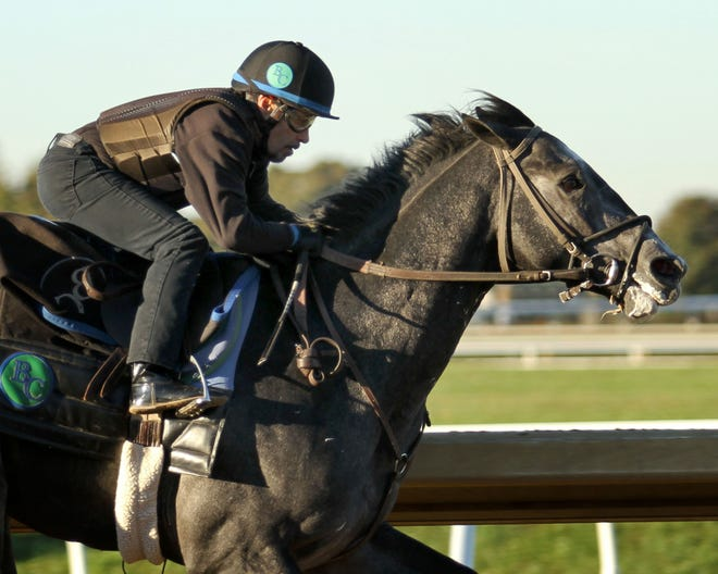 Knicks Go trains at Keeneland ahead of the 2018 Breeders' Cup.
