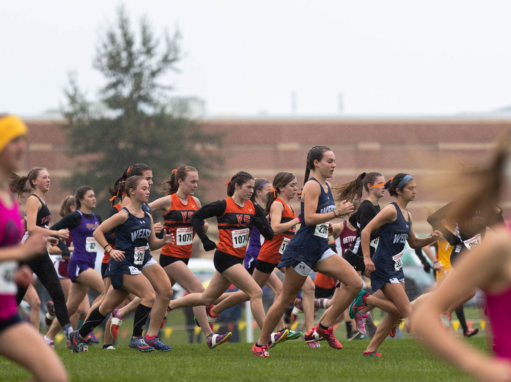 The York Suburban team starts off the Girls AA race during the PIAA District III Cross Country Championship, Saturday, Oct. 27, 2018, at Big Spring High School in Newville.