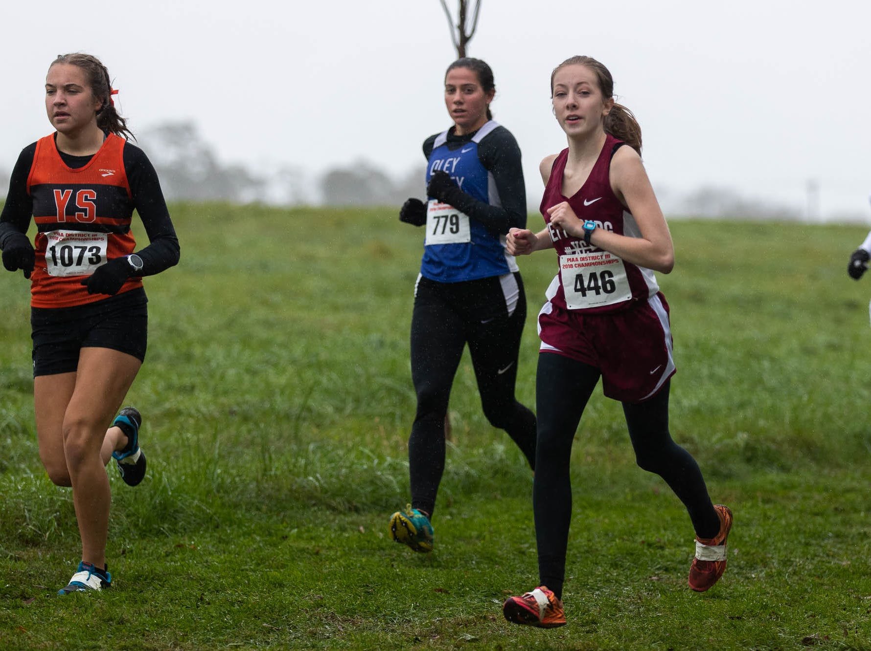 Gettysburg's Marrin Crist (446) races in the Girls AA race during the PIAA District III Cross Country Championship, Saturday, Oct. 27, 2018, at Big Spring High School in Newville.