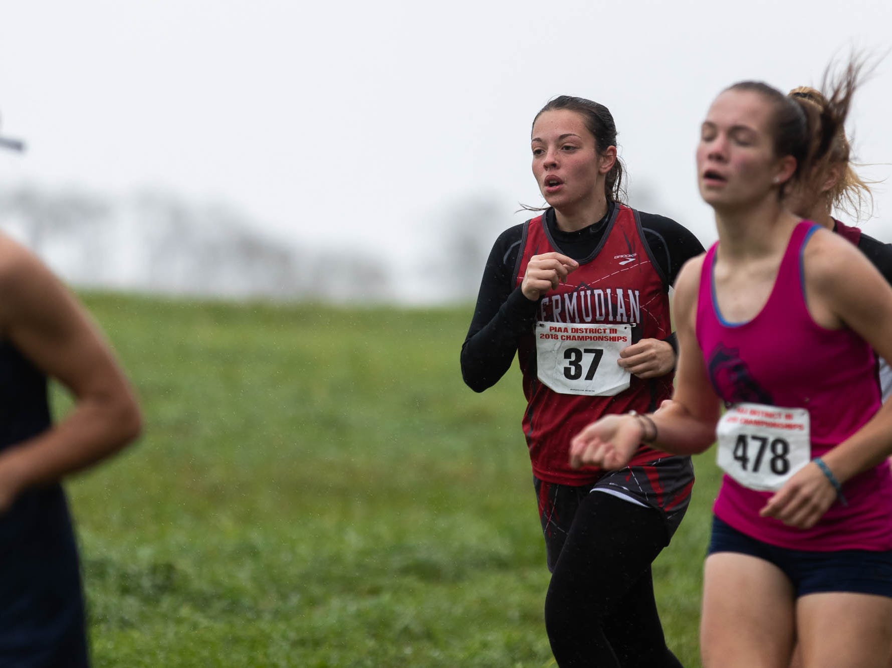 Bermudian Springs' Mia Hensil (37) runs in the Girls AA race during the PIAA District III Cross Country Championship, Saturday, Oct. 27, 2018, at Big Spring High School in Newville.
