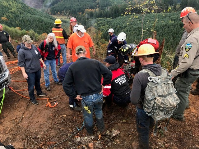 A Monmouth man died in a logging accident near Alsea on Friday, Oct. 26.