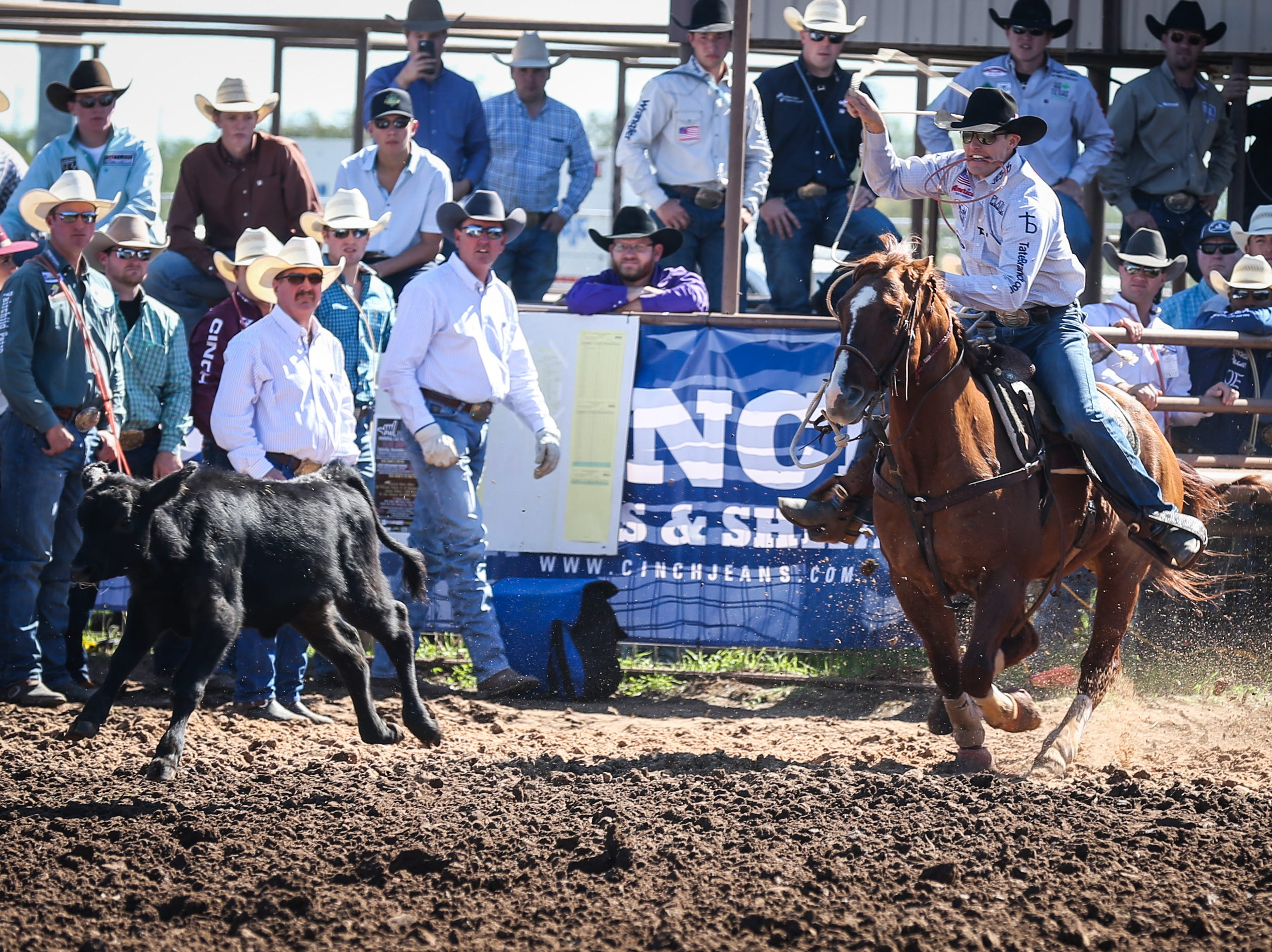 Tuf Cooper rides out to tie down a calf during Cinch Roping Fiesta Saturday, Oct. 27, 2018, at the Outdoor Roping Arena.