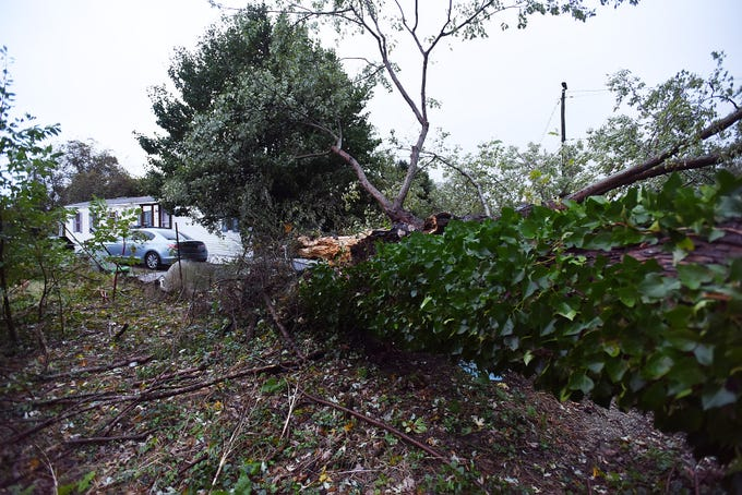 Trees were blown down along with power lines on Hebron Road near Rehoboth Beach early Saturday morning.