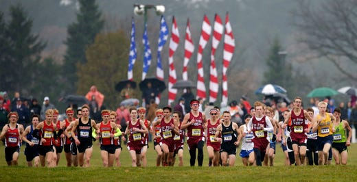 Meinke Leads Rockets To Division 1 Cross Country Title