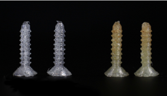 Dr. Mills' lab made these bioactive screws to repair fractures and release antibiotics into infected areas.