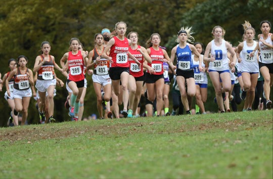 Daisy Liljegren (385), of Northern Highlands, took an early lead at Darlington County Park in Mahwah. Liljegren, went on to win the Bergen County Cross Country Championship race with a time of 17:42.  Sunday, October 28, 2018
