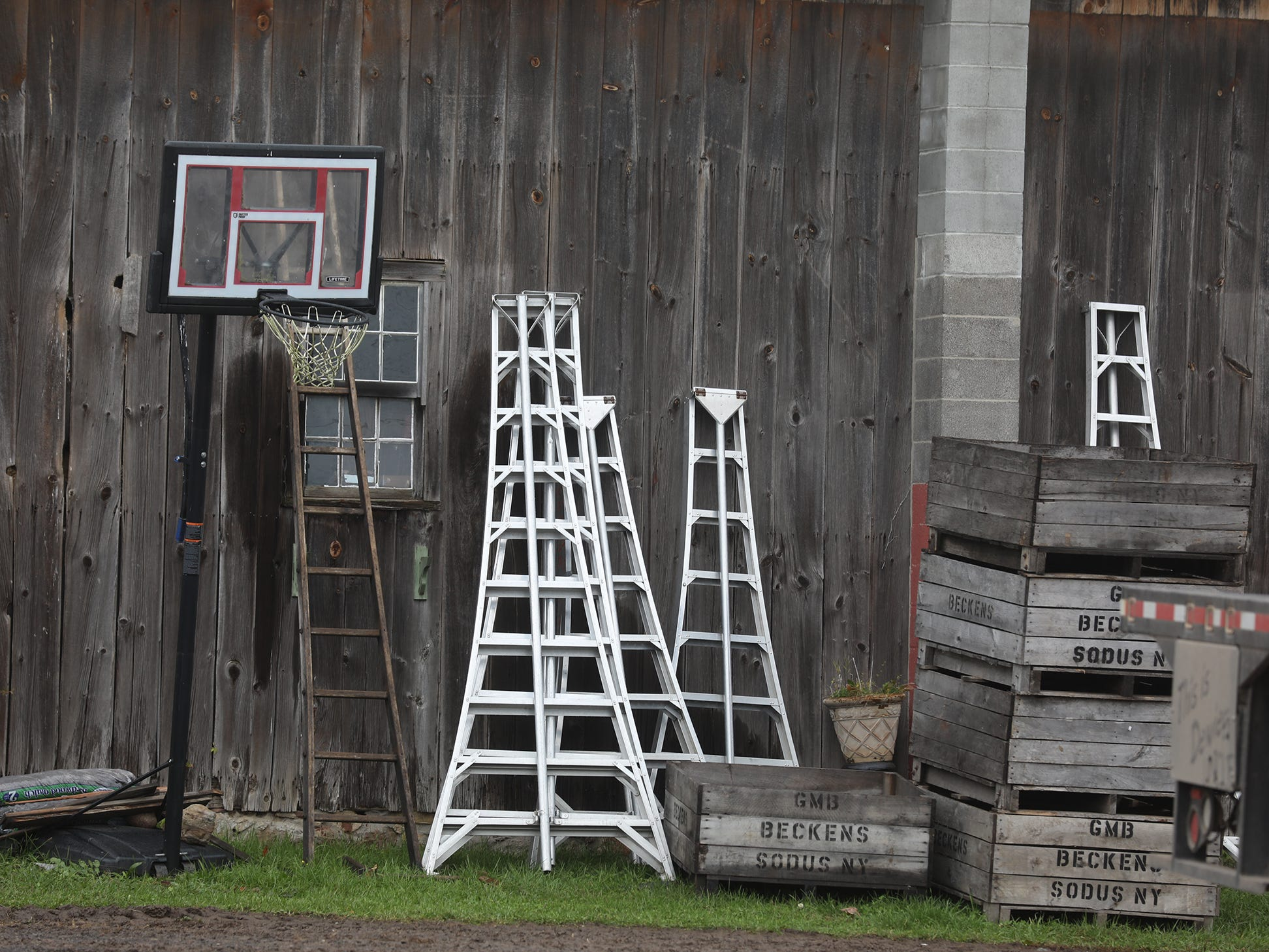 Ladders and crates for picking apples lean against a barn at GMB Beckens Farms LLC.