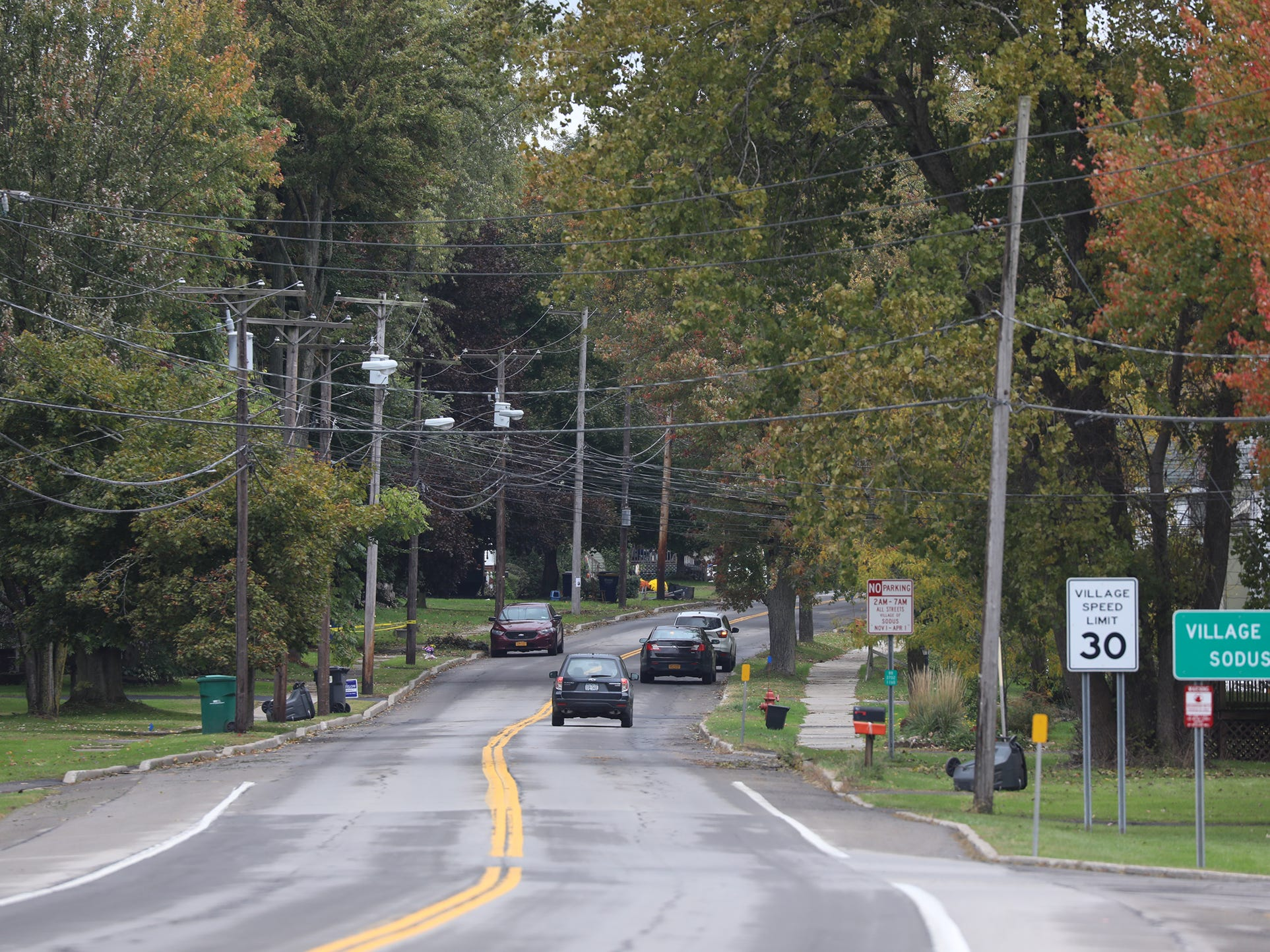 Carlton St. also known as Rt. 88 is one of the main roads into the Village of Sodus.