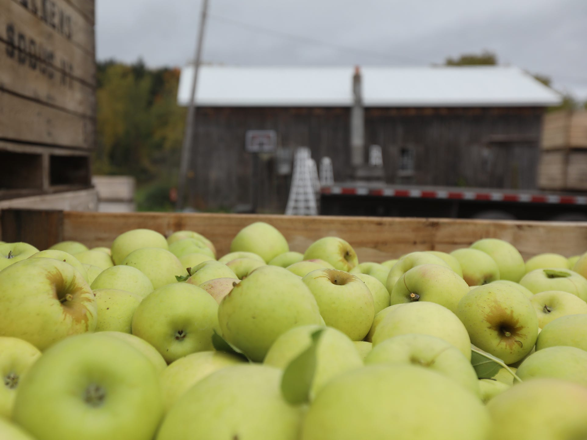 Apples in crates at GMB Beckens Farms LLC get loaded onto a truck.