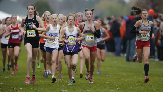 Stevens Point Area Senior High freshman Roisin Willis, left, runs with the front pack in the Division 1 girls race during the WIAA state cross country meet Saturday in Wisconsin Rapids.