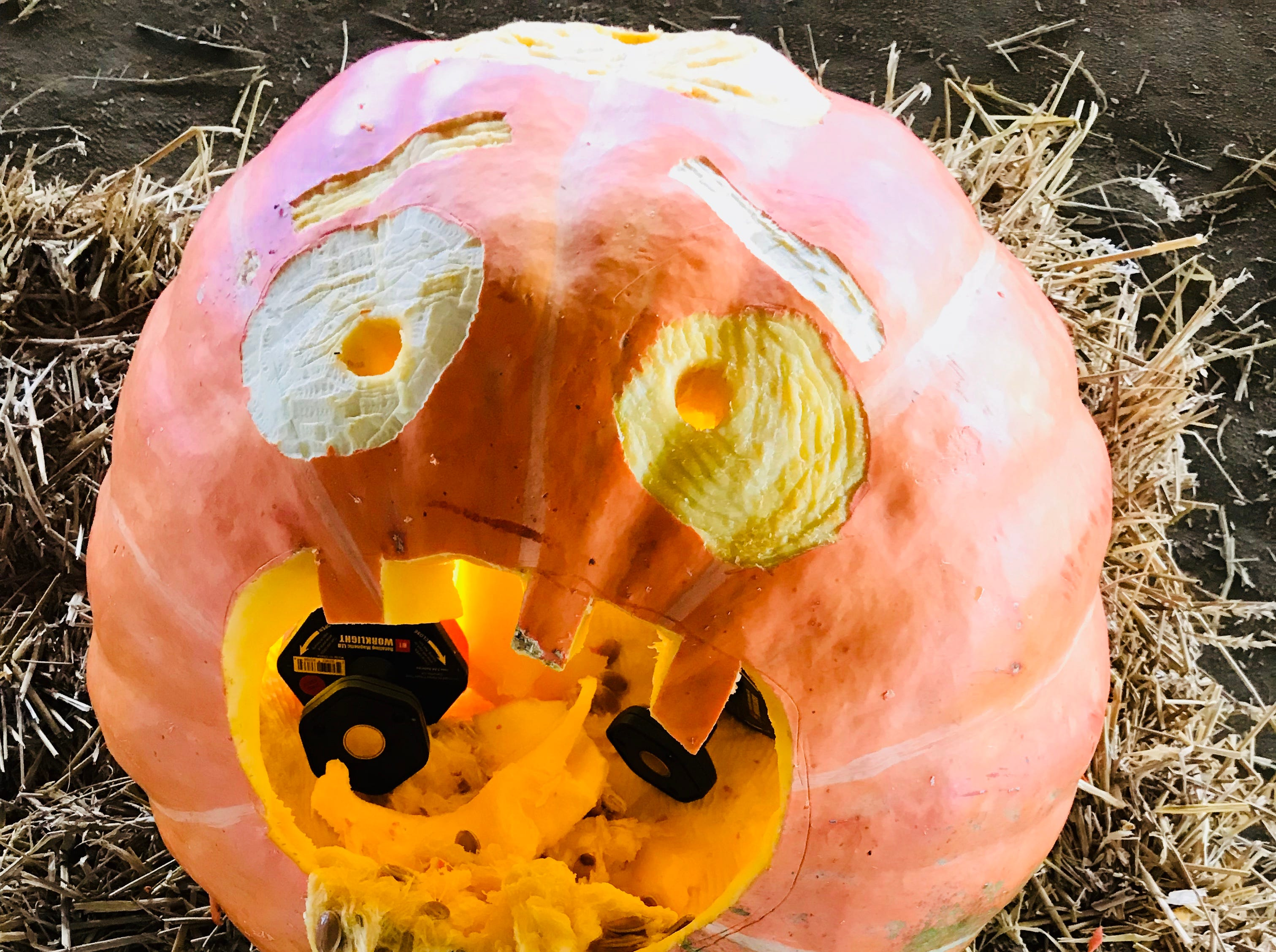 Pumpkin flu affected several carvings at the first Great Delaware Pumpkin Carve, this one by Team iHeart.