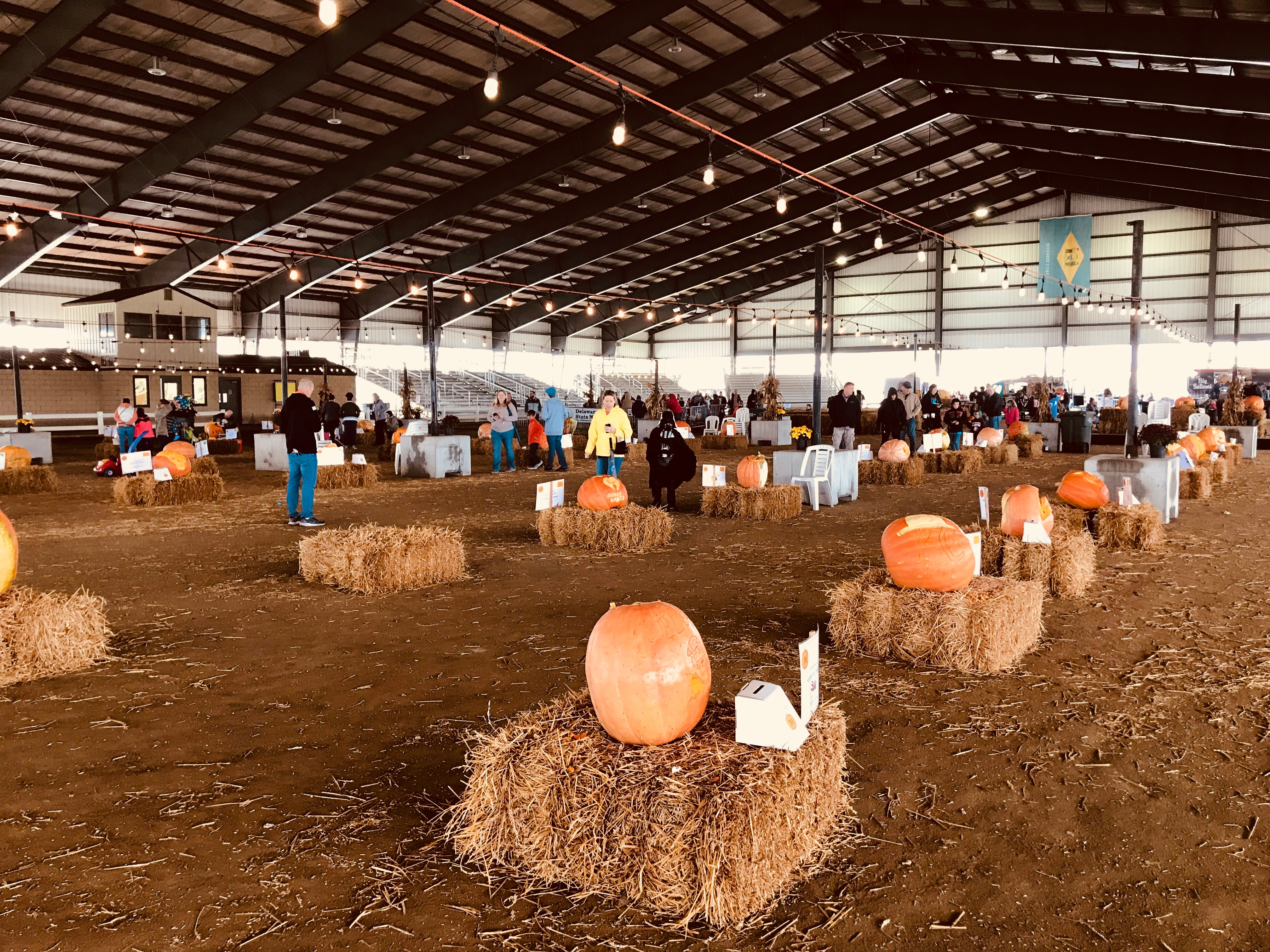 The Biggs Museum of American Art and the Delaware State Fair have agreed to sponsor the Great Delaware Pumpkin Carve for a few years with hopes of making it an annual event at the fairgrounds, where it has room to grow. The festival includes all kinds of kids activities and costume contests on Saturday.