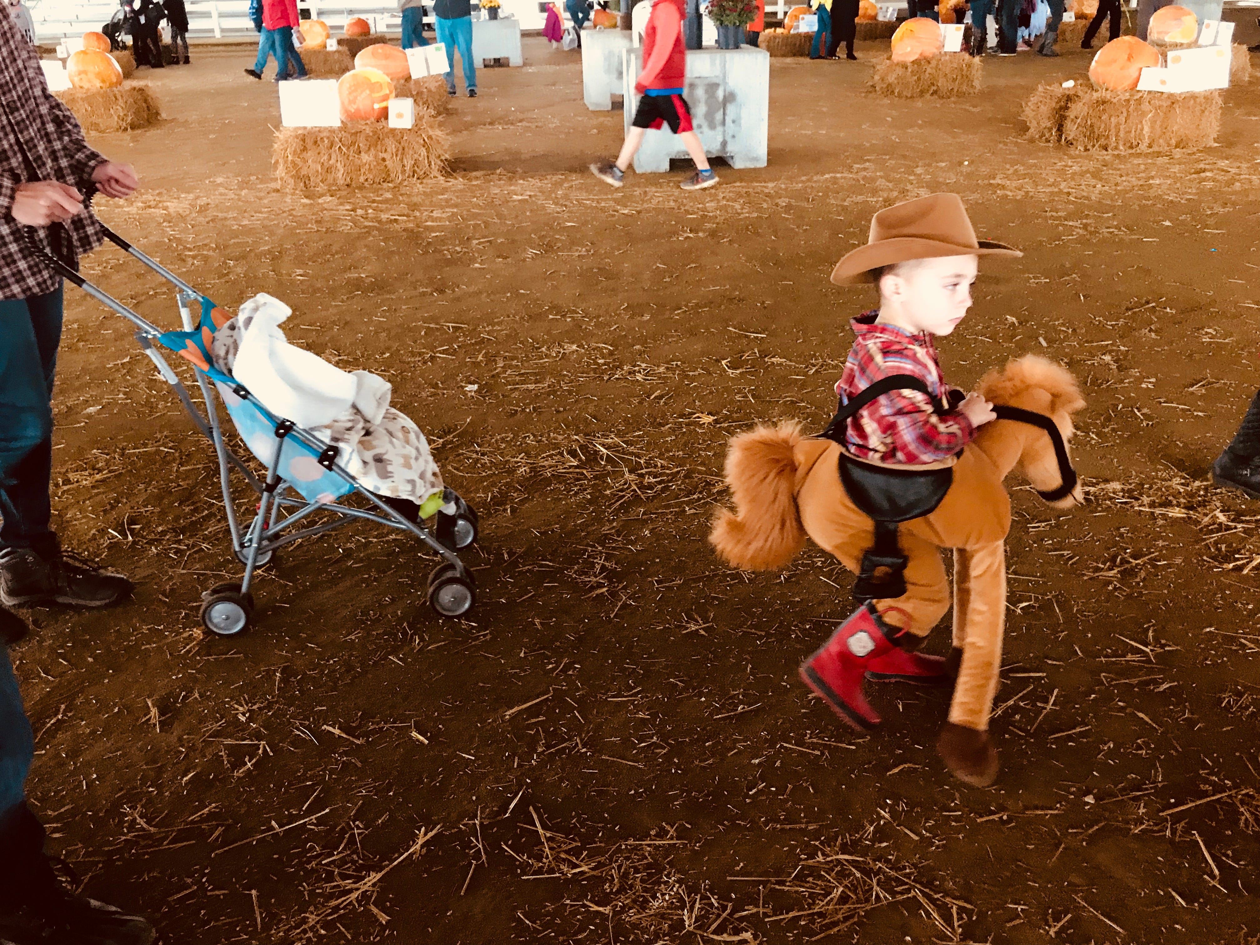 One of the young costume contestants gallops among the pumpkins at the first Great Delaware Pumpkin Carve.