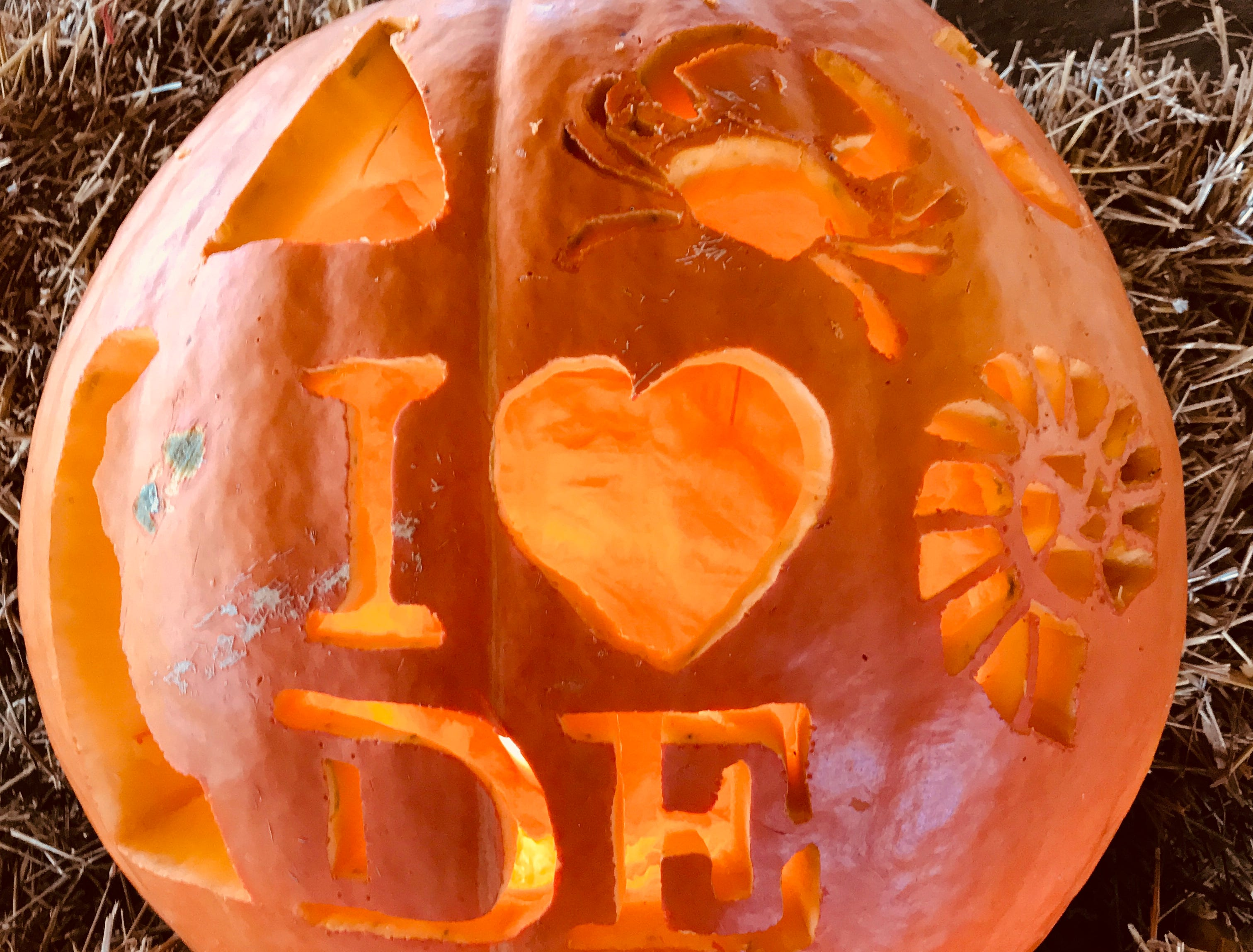 This salute to Delaware was created by Theresa Taylor for the Great Delaware Pumpkin Carve.
