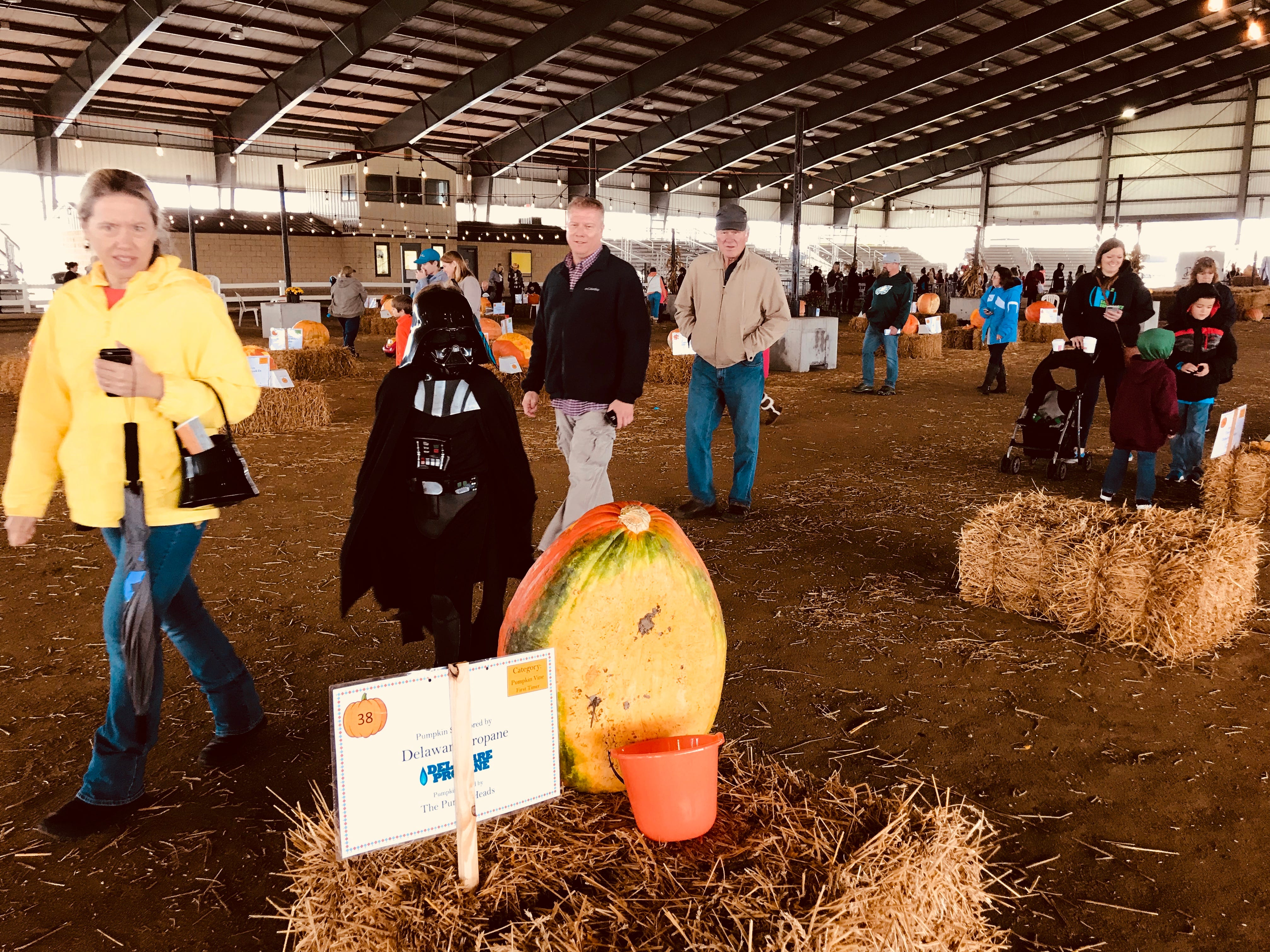 Darth Vader dropped by The first Great Delaware Pumpkin Carve at the Delaware State Fairgrounds in Harrington Saturday.