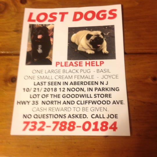 A flier for help in finding Basil and Joyce.