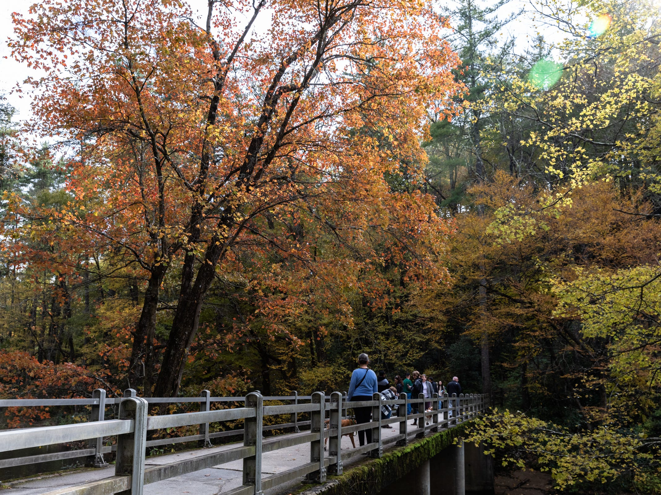 Visitors cross the bridge, surrounded by fall color to Linville Falls Oct. 28, 2018.