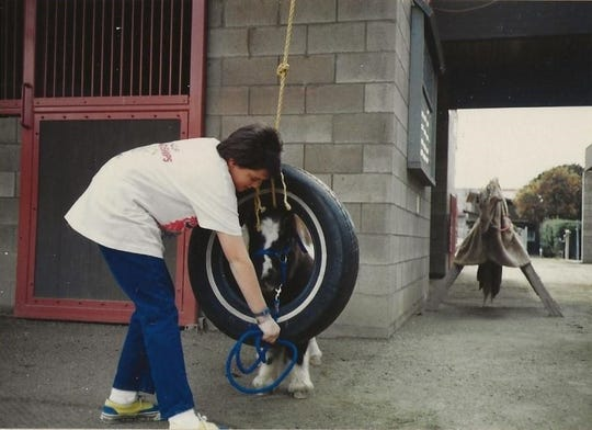 Christine Bragg leading T.D. through a tire swing at the Helen Woodward Animal Center around 1987.