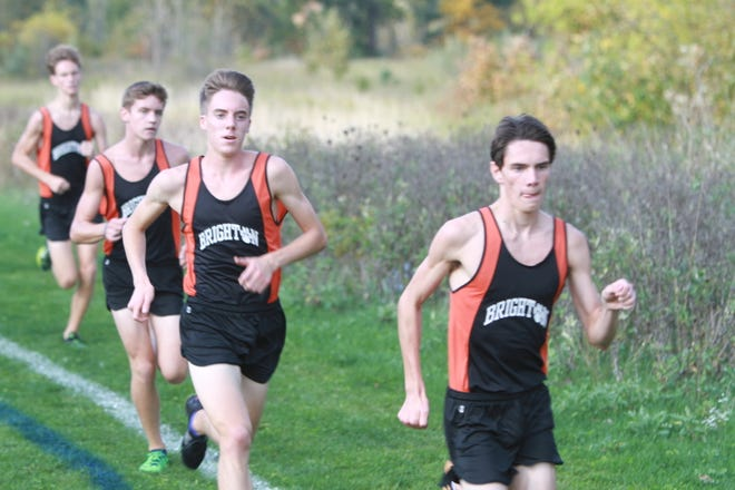 (Front to back) Zach Stewart, Jack Spamer, Scott Spaanstra and Nolan McGahan have kept Brighton near the top of the state boys cross country rankings all season.