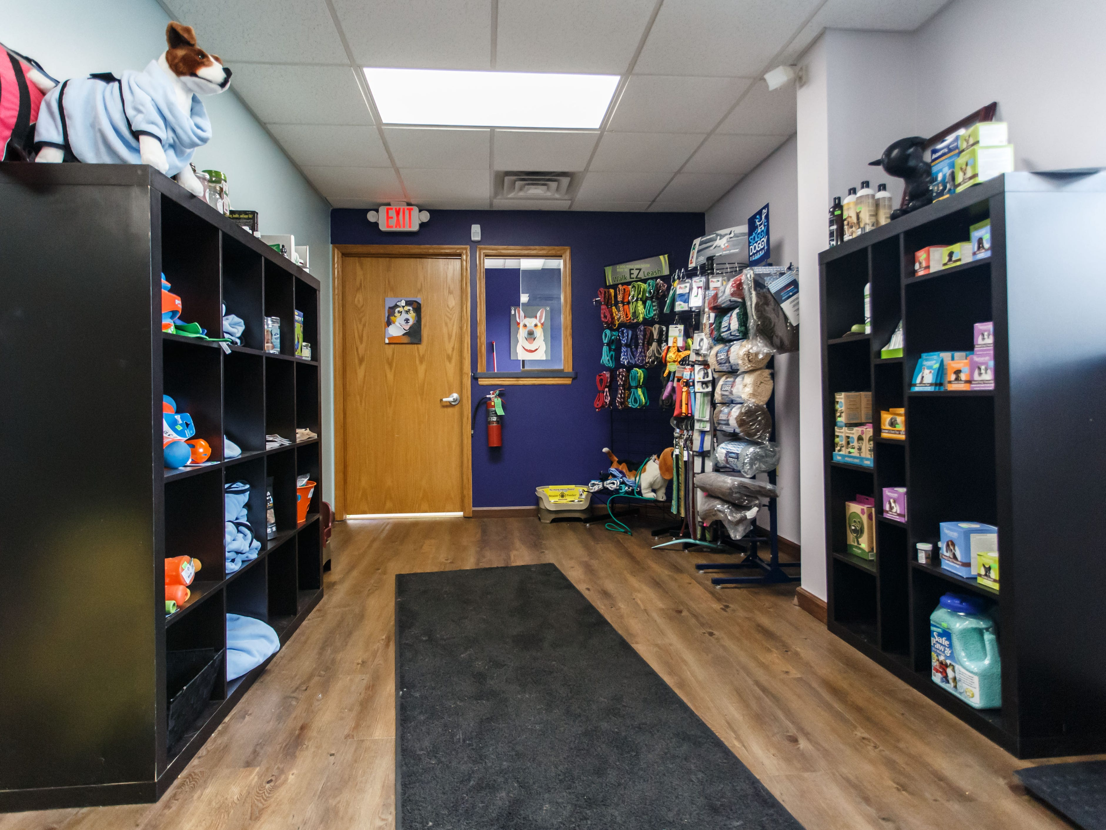 Aqua Therapups in Slinger offers a heated indoor swimming for dogs that can be used for rehabilitation, exercise or just plain fun. They also carry a variety of accessories and doggie safe treats as seen on Monday, Oct. 29, 2018. The business is opening a second location in Brookfield this November.