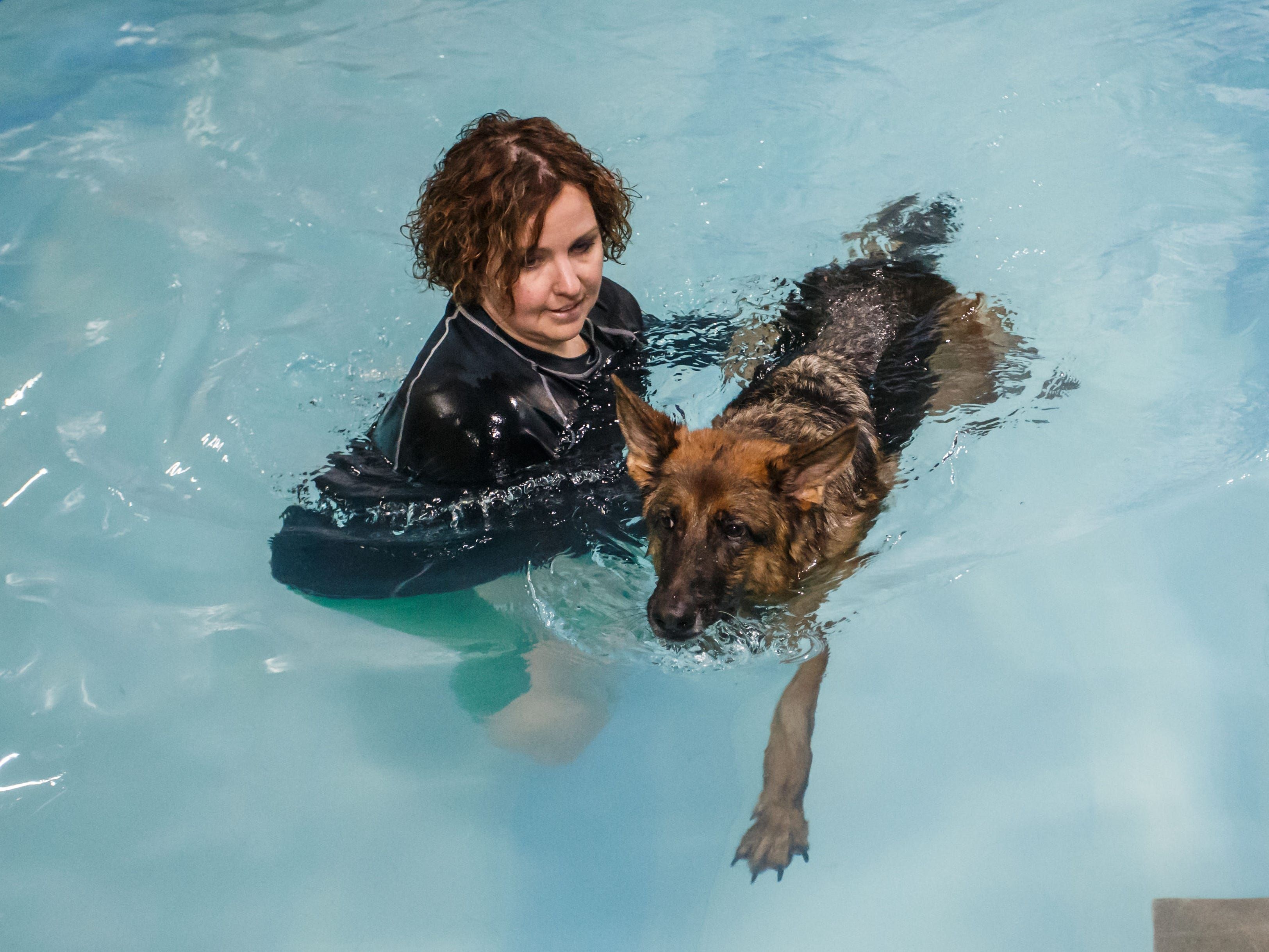 Owner/trainer Becky Pease of Aqua Therapups in Slinger works with a German Shepherd in the indoor heated dog pool at the facility on Monday, Oct. 29, 2018. The business is opening a second location in Brookfield this November.