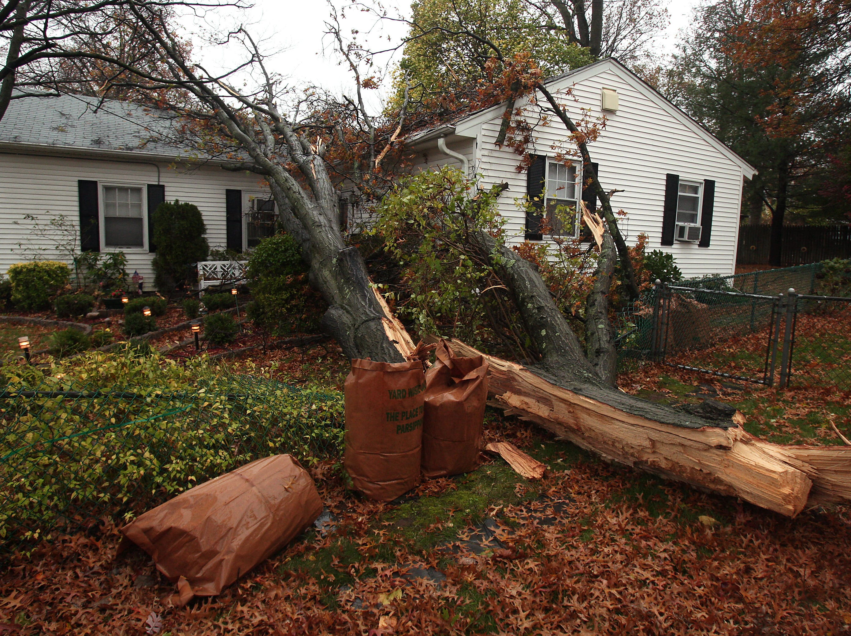 Parsippany, NJ-- October 29, 2012--A large tree fell due to high winds from Hurricane Sandy, crashing into a Flemington Drive home. 