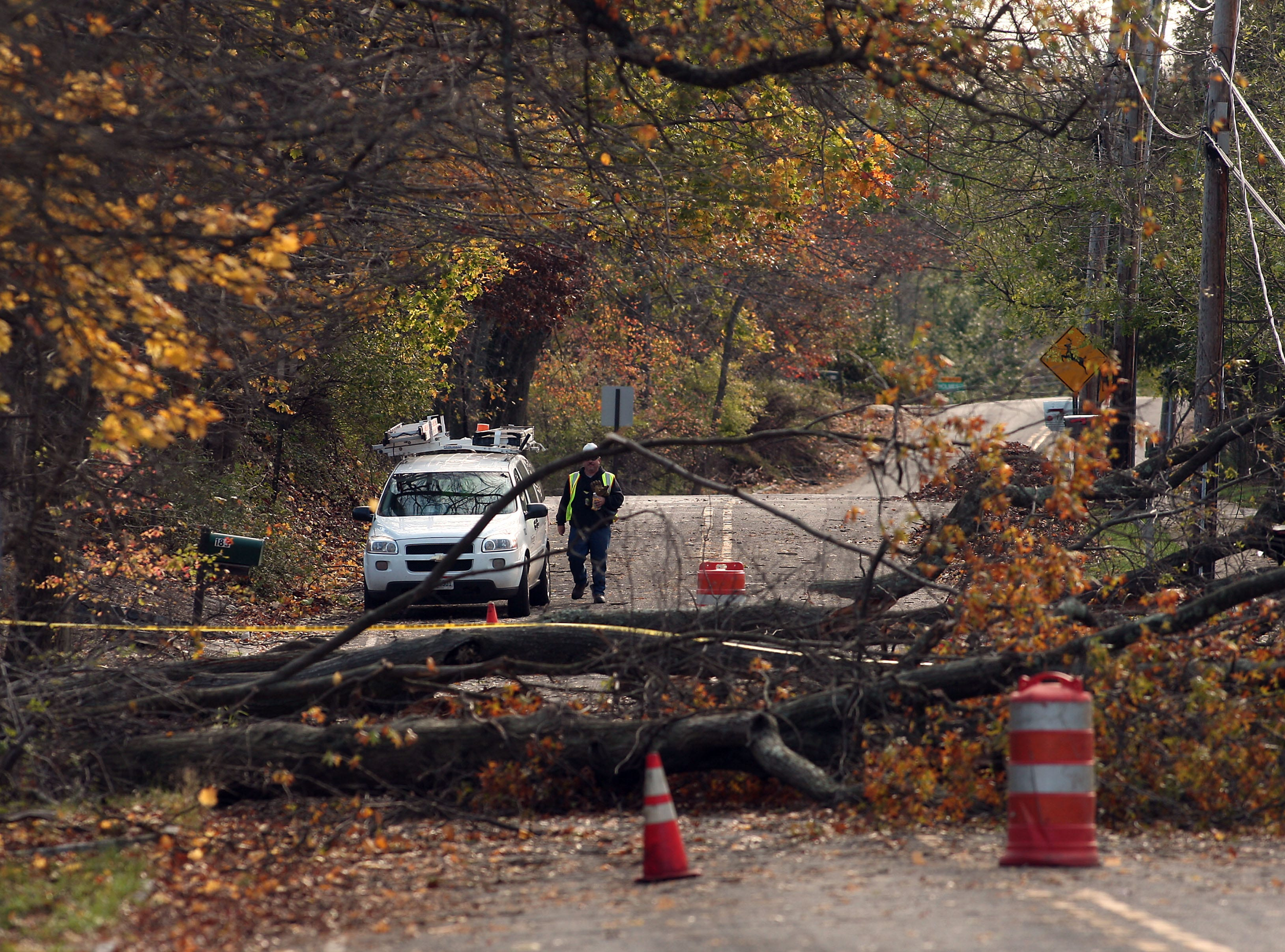 Morris Twp, NJ- November 2, 2012--Trees and wires down on Lake Road in Morris Twp, NJ. 