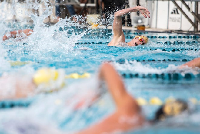 The Div. I and II state swimming championships will be at the Skyline Aquatic Center in Mesa on Nov. 5, 2018.