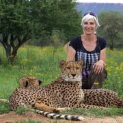 Poughkeepsie artist Paola Bari is shown in Africa with two of the ambassador cheetahs.