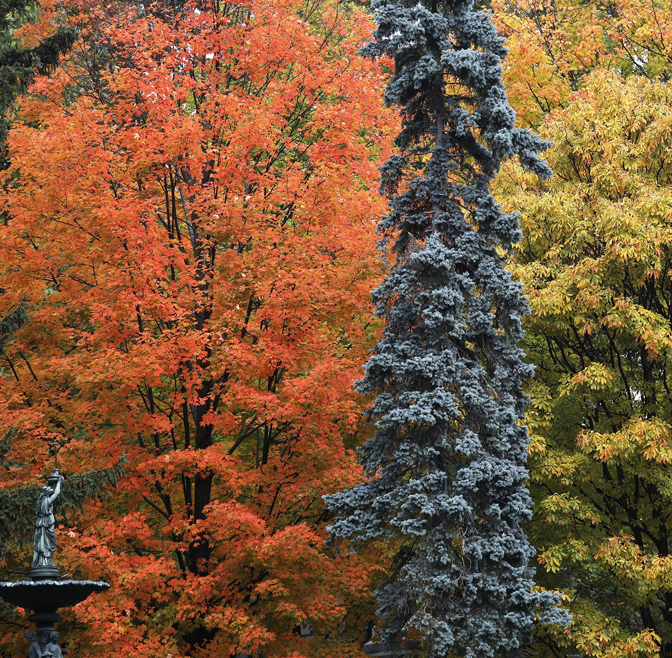 Peak and near-peak: Where is the best fall foliage this weekend?