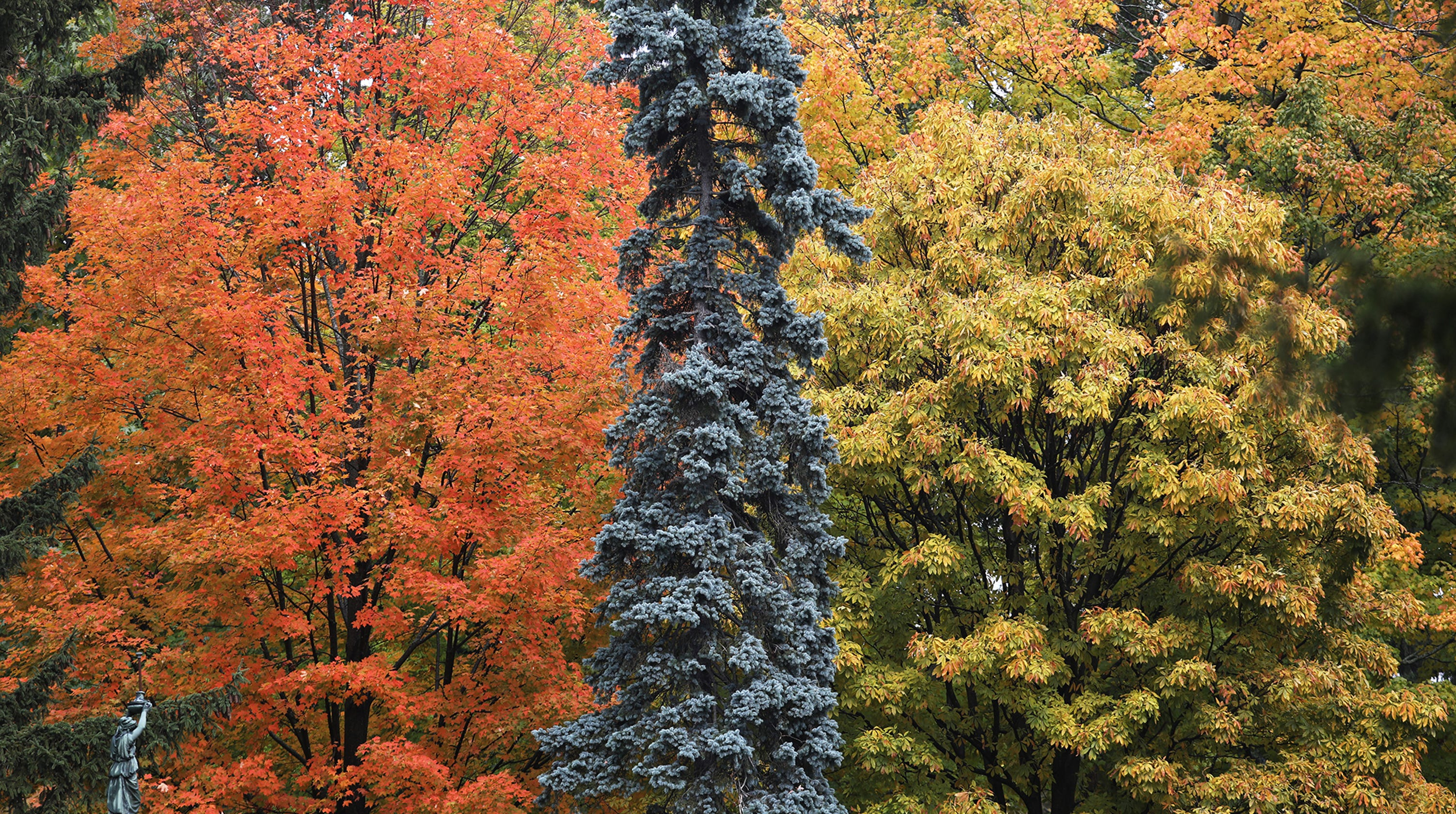 NY Fall Foliage 2018: Where The Colors Are, Week Of Oct