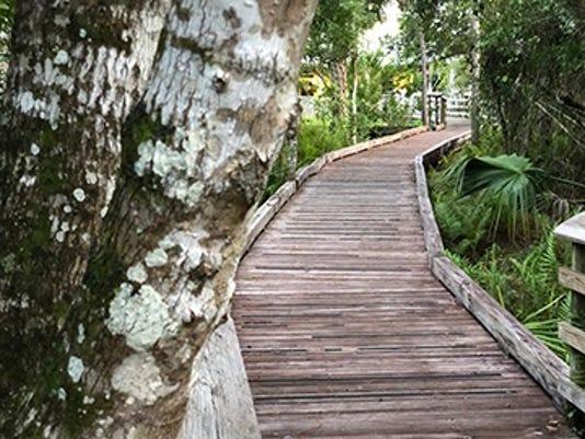 1107 Ynsl Oxbow Lichen Boardwalk