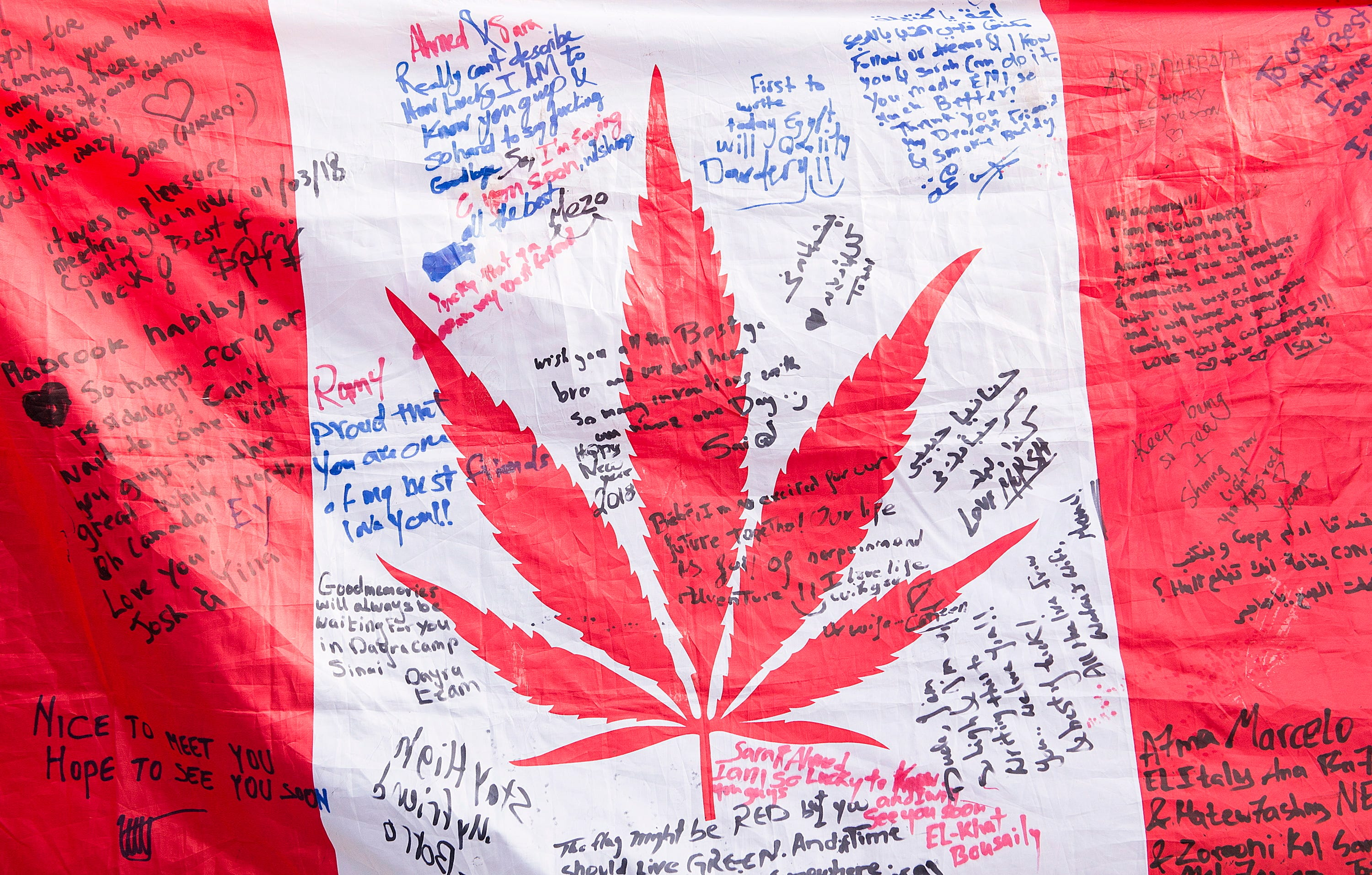 Canada Legalization: Could The NHL Be A Leader In Pot Policy?